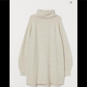 H&M Turtleneck Sweater Dress